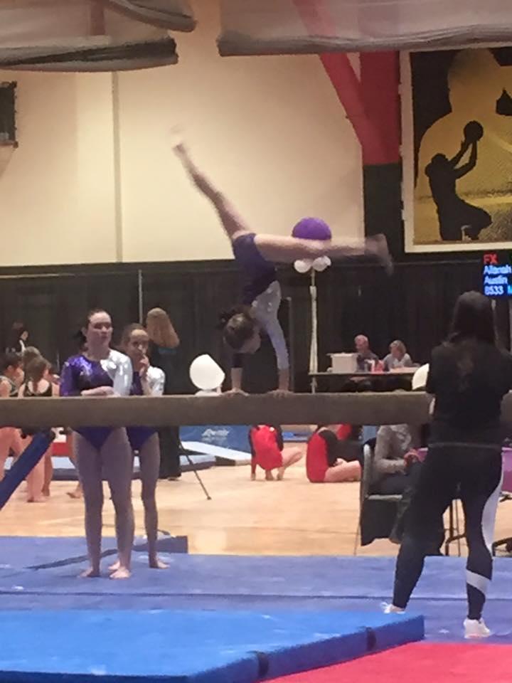 level 5 gymnastics meet january 2016 images